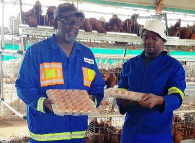 COMMUNITY FARMERS GROW THEIR DREAMS INTO BUSINESSES